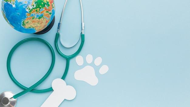 Widok z góry na papierową łapę i kość ze stetoskopem i planetą ziemią na dzień zwierząt