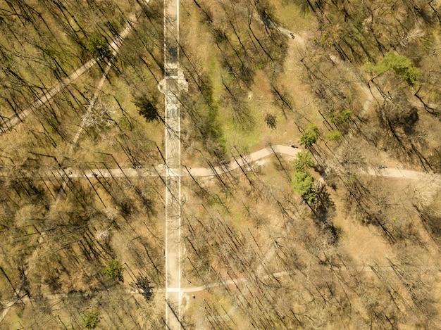 Widok z góry na park ze ścieżkami spacerowymi w kwietniowy słoneczny dzień, odbicie cieni na ziemi. fotografia dronem