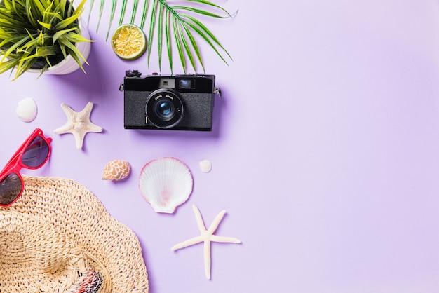 Widok z góry na płaską makietę filmów z aparatu, samolotu, okularów przeciwsłonecznych, akcesoriów dla podróżujących na plaży rozgwiazdy