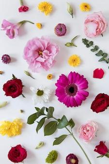 Widok z góry na wspaniały układ kwiatów