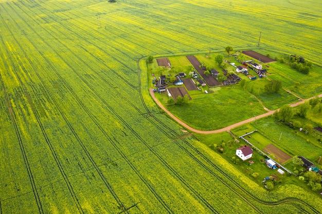 Widok z góry na zasiane zielone pole i małą wioskę na białorusi. we wsi pola uprawne.