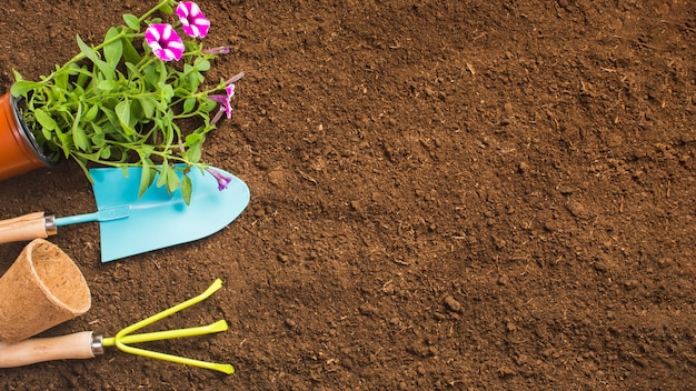 Widok z góry narzędzi ogrodniczych na ziemi