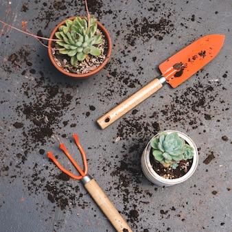 Widok z góry narzędzia ogrodnicze