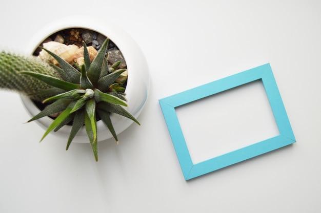Widok z góry niebieskiej ramki na biały stół i doniczkę z roślinami