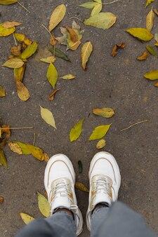 Widok z góry nogi w białych trampkach na drodze z żółtymi liśćmi.