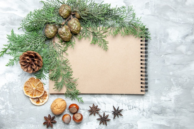 Widok z góry notatnik suszone plasterki cytryny anyż gałęzie sosny orzech laskowy na szarej powierzchni