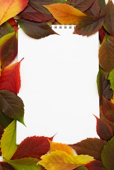 Widok z góry notebooka z ramą jesiennych liści