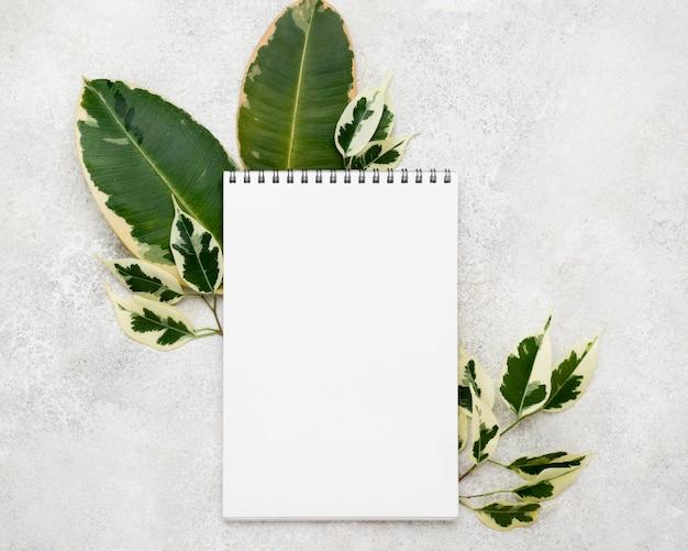 Widok z góry pięknych liści roślin z notatnikiem
