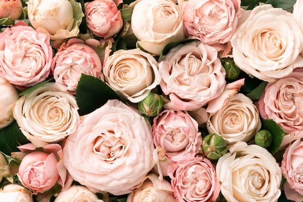 Widok z góry pięknych różowych kwiatów