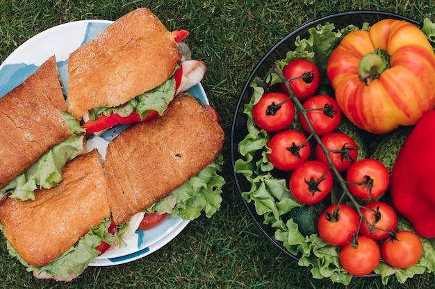 Widok z góry płyty domowej roboty smaczne kanapki z domowego chleba i świeżych warzyw. miska zdrowych eko warzyw na trawie.