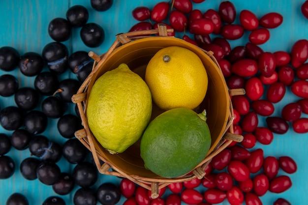 Widok z góry świeżych cytryn na wiadrze z jagodami dereń i czarnych winogron na białym tle na niebieskim tle drewnianych