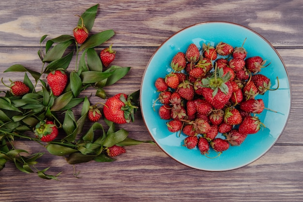Widok z góry świeżych dojrzałych truskawek w niebieskim talerzu i zielonych liści na rustykalnym