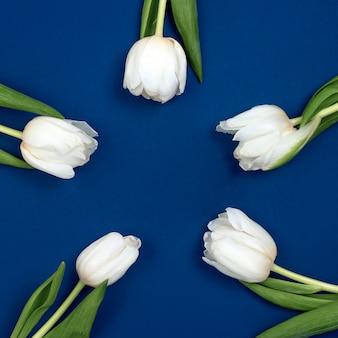 Widok z góry tulipany i pudełko z miejsca kopiowania. tło na dzień kobiet, 8 marca walentynki, 14 lutego. płaski układ, widok z góry, makieta, szablon, koszty ogólne.
