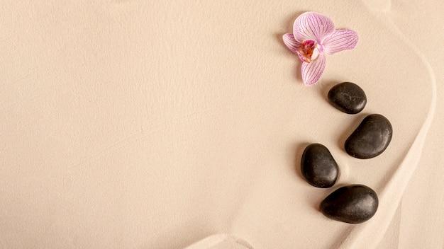 Widok z góry układ z kwiatem i kamieniami