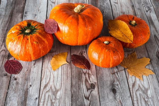 Widok z góry wielu pomarańczowych dyni z kolorowymi liśćmi na szarej drewnianej desce. tło jesień z miejsca na kopię