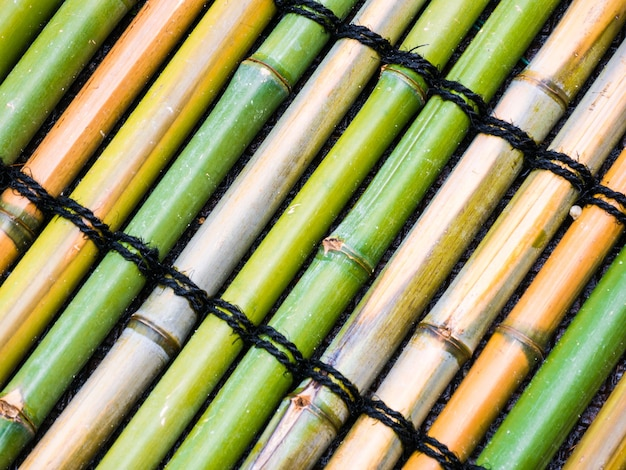 Widok z góry z bambusa