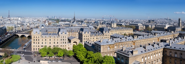 Widok z góry z katedry notre dame w paryżu