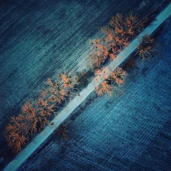 Widok z góry z lotu ptaka polskiej wsi