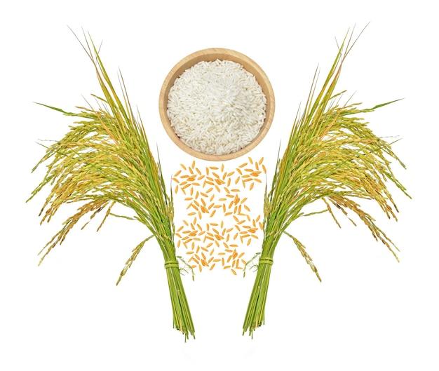 Widok z góry ziaren ryżu na białym tle