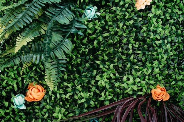 Widok z góry zielonych liści roślin i kwiatów tło wiosna lato i natura kopia przestrzeń