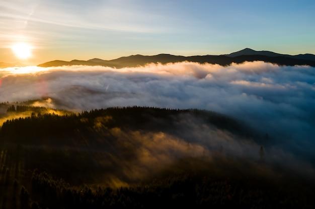 Widok z lotu ptaka ciemnozielone sosny w świerkowym lesie z promieniami wschodu słońca świecącymi przez gałęzie w mglistych górach upadku.
