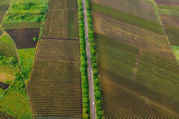 Widok z lotu ptaka droga rolnictwo pole winnica w letni dzień droga na wsi materiał asfaltowy krajobraz z asfaltową autostradą między łąką a wiejskim polem