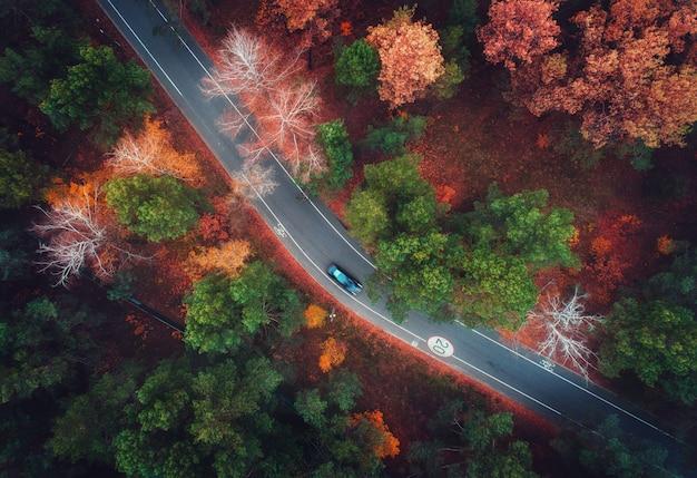 Widok z lotu ptaka droga z zamazanym samochodem w jesień lesie