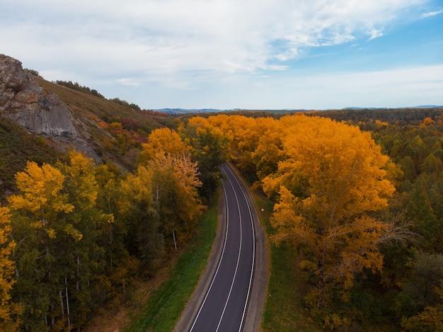 Widok z lotu ptaka drogi w pięknym jesiennym lesie ałtaju