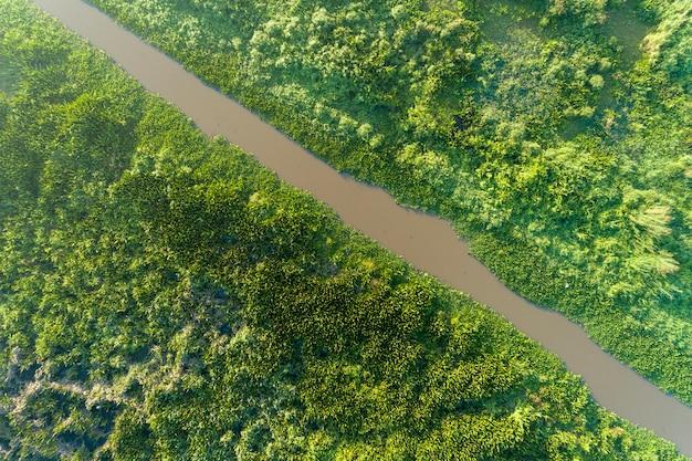 Widok z lotu ptaka drone strzał top down of green forest i jeziora piękne dzikiej przyrody dekoracje na tle