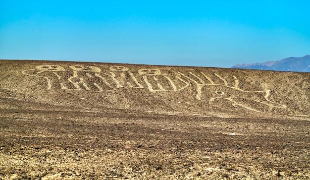 Widok z lotu ptaka geoglify palpa. światowe dziedzictwo unesco w peru
