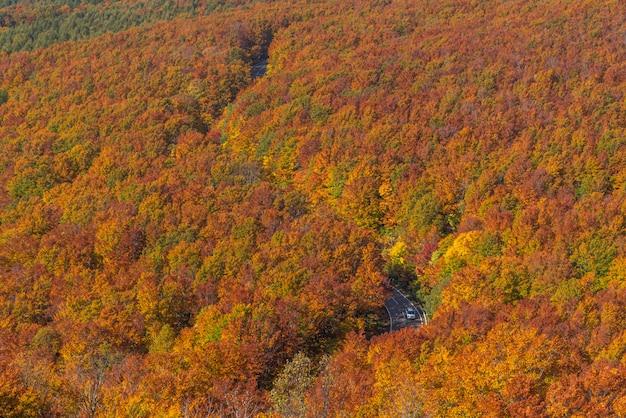Widok z lotu ptaka jesień tohoku japonia