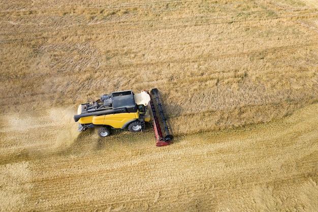 Widok z lotu ptaka kombajnu do zbioru duże pole dojrzałej pszenicy. rolnictwo z widoku drona.