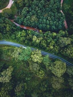 Widok z lotu ptaka krajobraz na las