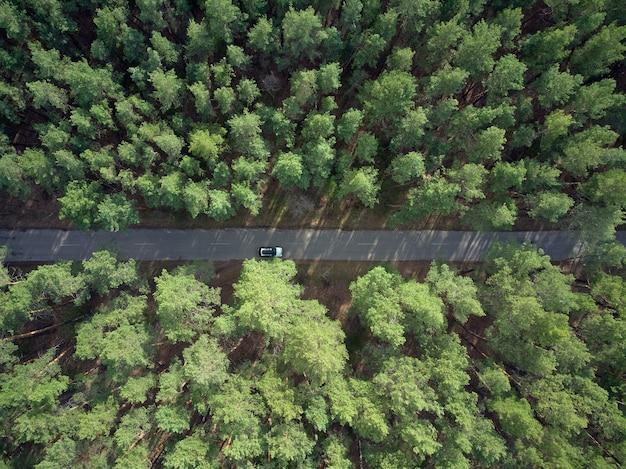 Widok z lotu ptaka na asfaltową drogę i zielony las sosnowy z widokiem na przygodę samochodową z góry
