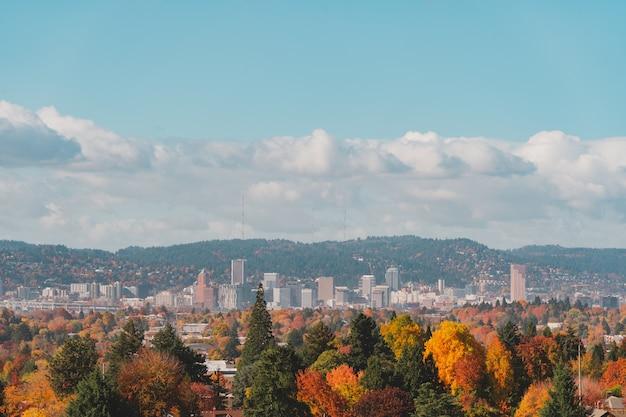 Widok z lotu ptaka na budynki i drzewa jesienią