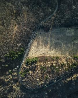 Widok z lotu ptaka na drogę otoczoną skałami i drzewami