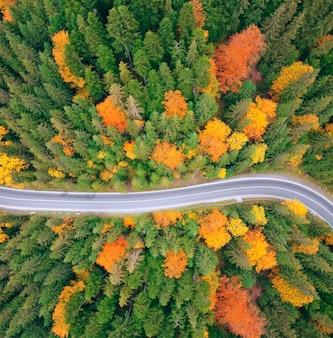 Widok z lotu ptaka na drogę w pięknym zielonym lesie o zachodzie słońca wczesną jesienią.