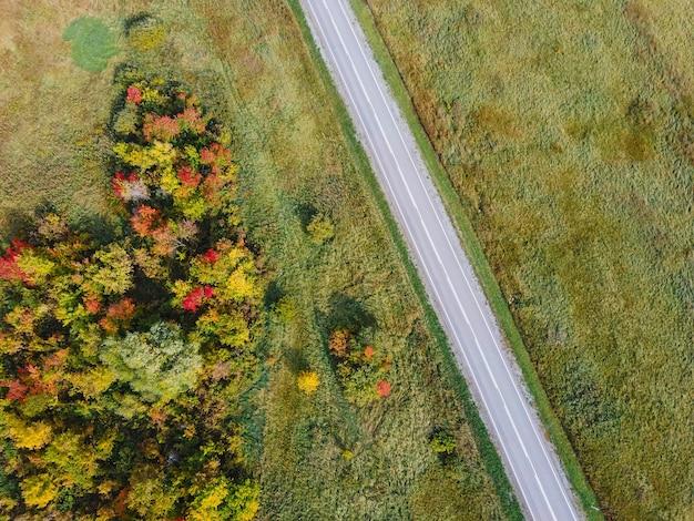 Widok z lotu ptaka na drogę z malowniczym jesiennym krajobrazem. jasne kolory jesieni, strzelanie z drona malowniczych jesiennych tła. widok z góry