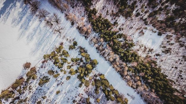 Widok z lotu ptaka na drzewa pokryte śniegiem w lesie w monachium