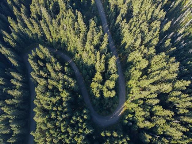 Widok z lotu ptaka na górską drogę przechodzącą przez leśny krajobraz