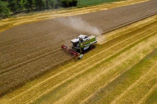 Widok z lotu ptaka na kombajn pracujący na dużym polu pszenicy.