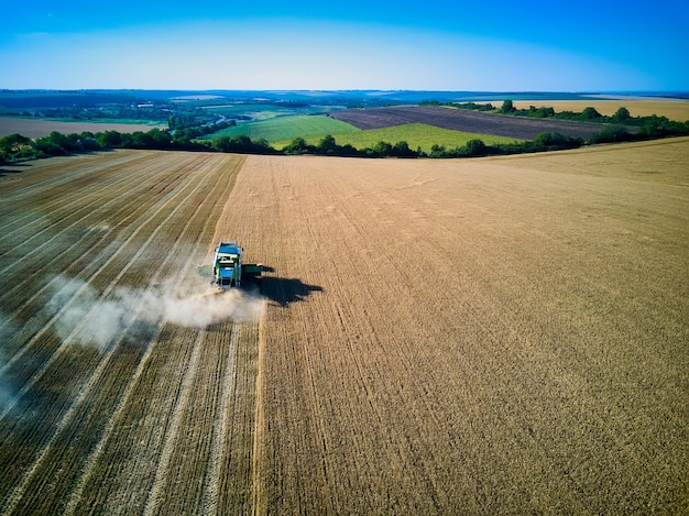 Widok z lotu ptaka na kombajn zbożowy zbiera pszenicę o zachodzie słońca. zbiór zboża, sezon upraw. zobacz kombajn na częściowo zebranym polu.
