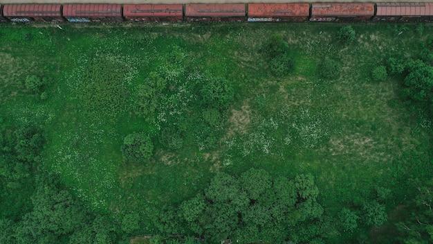 Widok z lotu ptaka na łąkę