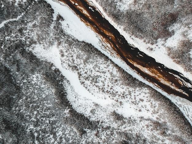 Widok z lotu ptaka na las zimą