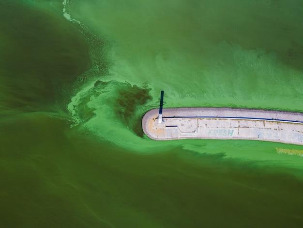Widok z lotu ptaka na latarnię morską otoczoną zakwitem glonów