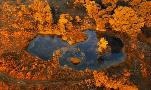 Widok z lotu ptaka na małe jezioro w lesie jesienią wcześnie rano o wschodzie słońca. piękny jesienny krajobraz nakręcony przez drona.