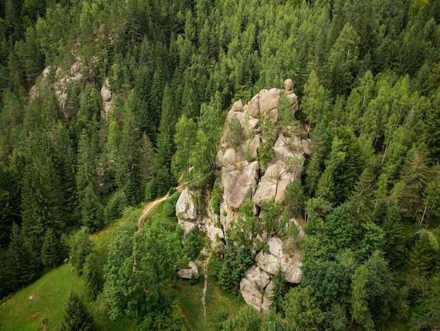 Widok z lotu ptaka na malowniczą skałę położoną wśród świerkowego lasu w górach