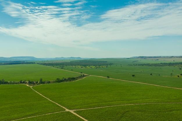 Widok z lotu ptaka na obszar plantacji trzciny cukrowej z górami