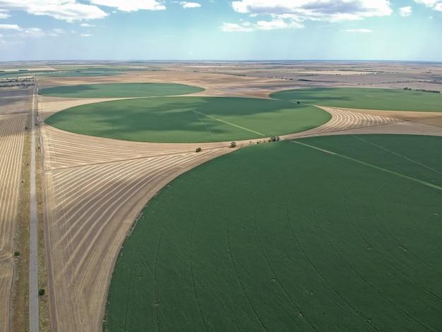 Widok z lotu ptaka na okrągłe pole na ukrainie