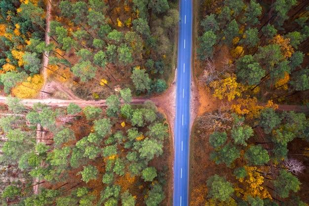 Widok z lotu ptaka na piękny jesienny las i asfaltową drogę o zachodzie słońca. wspaniały jesienny krajobraz z żółto zielonymi i czerwonymi liśćmi drzew i pustą drogą. droga przez rezerwat.